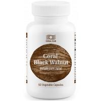 Coral club black walnut coral / coral juodasis riešutas