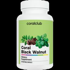 Coral club coral black walnut / coral juodasis riešutas
